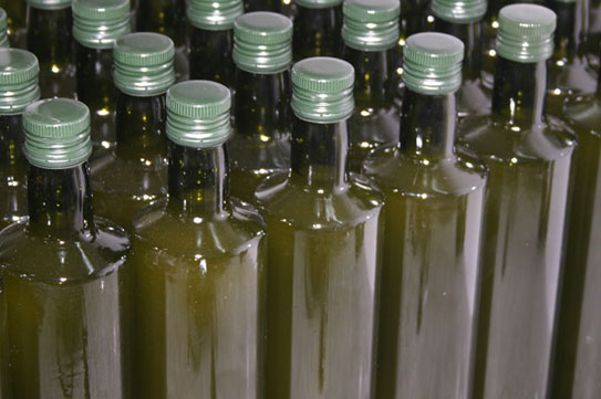 oilmalva_typopoiisi_bottles